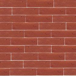 Terracotta Muro Lampone