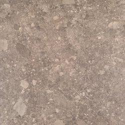 Pietra Lombarda Sepia
